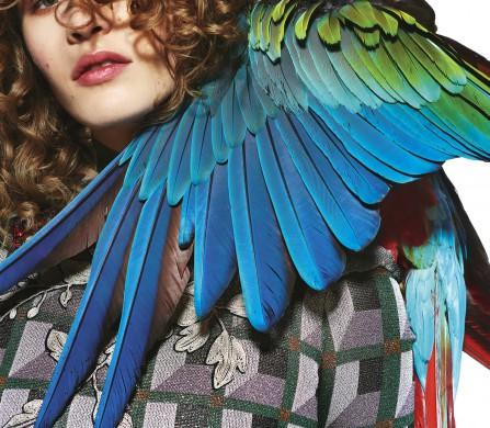 23012016_0262_Donna_Schon_Magazine