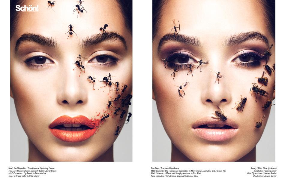 The Swarm / Elias Hove & Tessa Farmer