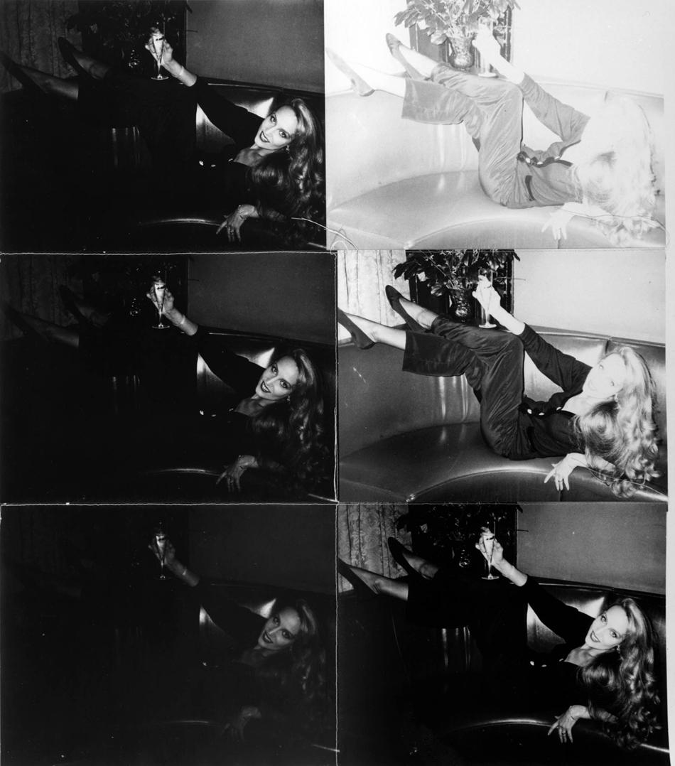 Andy Warhol, Jerry Hall,1976 1987.