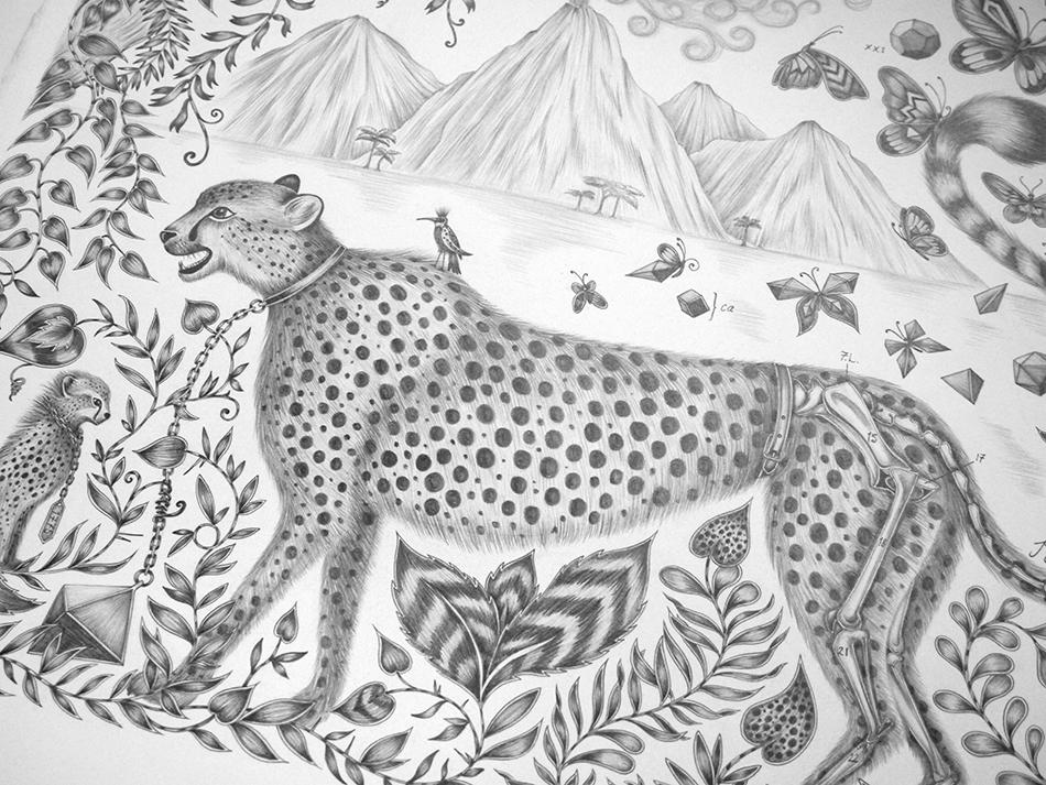 Cheetah Drawing