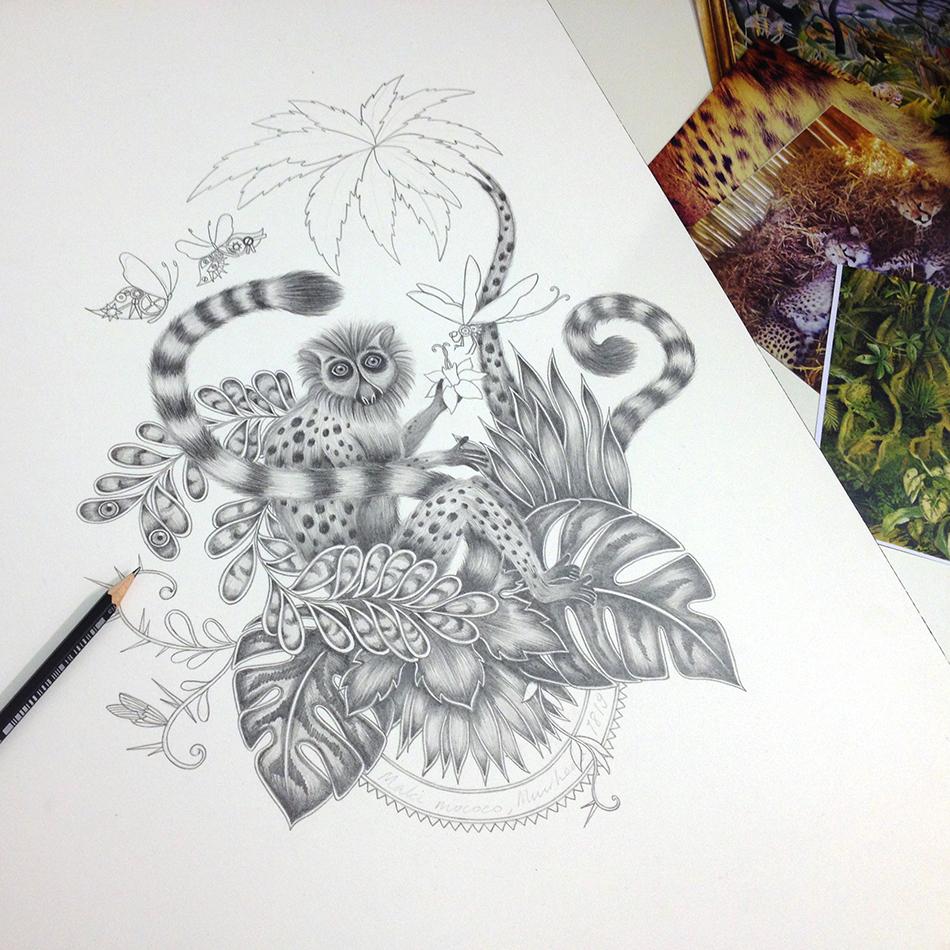 Lemur drawing