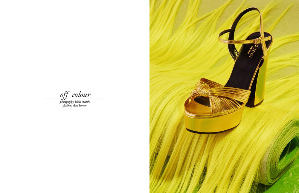 Shoe / Gucci